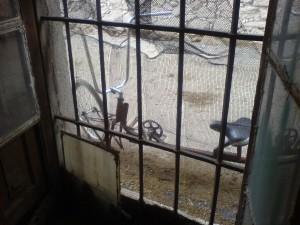 rat burrito ventana